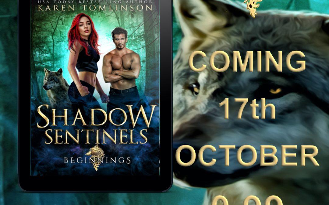 Cover Reveal! Shadow Sentinels: Beginnings!